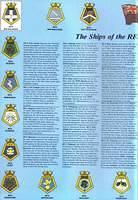 Page 20 - RFAs In the Falklands