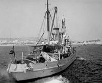 Sea Salvor 1955